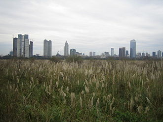 Costanera Sur Ecological Reserve - Puerto Madero viewed from the Buenos Aires Ecological Reserve