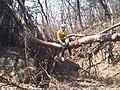 Resting Mountain biker - panoramio (1136).jpg