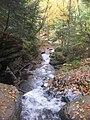 Ricketts Glen State Park Ozone Falls 4.jpg