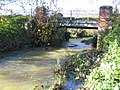 River Stort south of Clavering - geograph.org.uk - 281407.jpg
