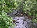 River Tavy - geograph.org.uk - 1348989.jpg
