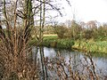 River Test from Budds Lane, Romsey - geograph.org.uk - 625463.jpg