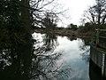 River Wensum - geograph.org.uk - 1181129.jpg