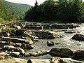 River rapids on the river Svicha - panoramio.jpg