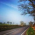 Road - panoramio (130).jpg