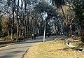 Road Through Adra (14863829525).jpg