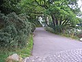 Road from the pier - geograph.org.uk - 1404677.jpg