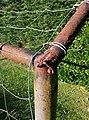 Rock-cornwall-england-tobefree-20150715-185448.jpg