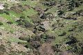 Romana - Formazioni rocciose (07).JPG