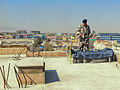 Roof Patrol (5774072403).jpg