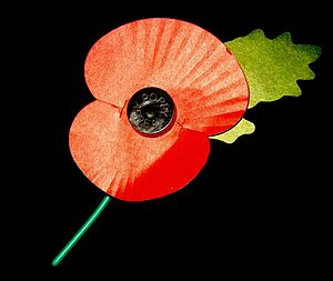 An artificial corn poppy, worn in the United K...