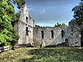 Ruine Homburg3.jpg