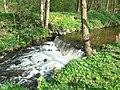 Rzeka Okalica - panoramio.jpg