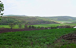 Sîngerei District, Moldova - panoramio (4).jpg