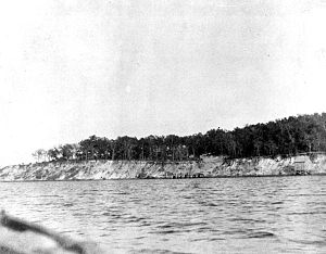 Battle of St. Johns Bluff - St. Johns Bluff around 1900.