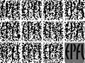 SPAD EPFL BINARY IMAGES.jpg