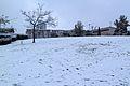 Sacher Park January 2014-002.jpg