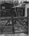 Sacramento, California. Close-up of living conditions for children in Louis' Camp. - NARA - 521723.tif