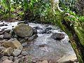 San Isidro Costa Rica 1.jpg