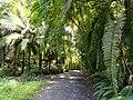 San Juan Botanical Garden - DSC07087.JPG