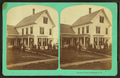 Sanborn Cottage, Bethlehem, N.H, from Robert N. Dennis collection of stereoscopic views 4.png