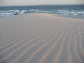 Emergence - Ripple patterns in a sand dune created by wind or water is an example of an emergent structure in nature.