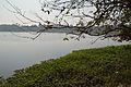 Santragachi Lake - Howrah 2013-01-25 3598.JPG