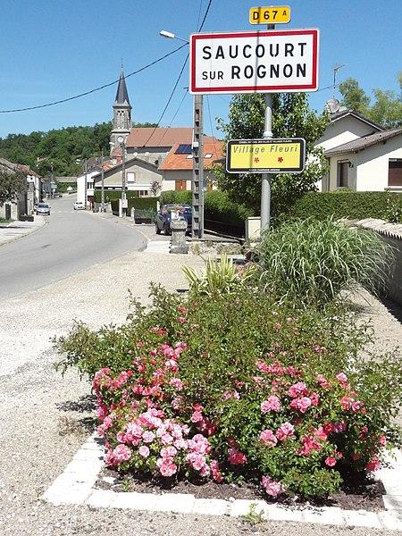 Saucourt-sur-Rognon (Doulaincourt-Saucourt), city limit sign
