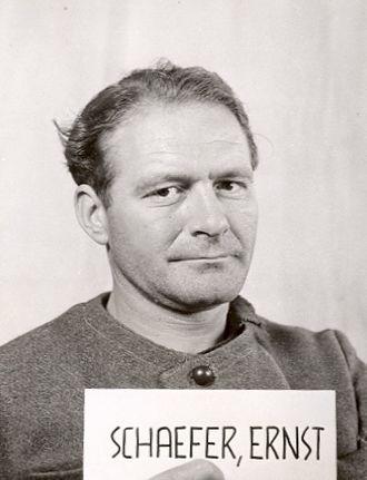 Ernst Schäfer - Ernst Schäfer in Allied internment