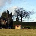 Schwangau, Bayern, Germany - panoramio (1).jpg