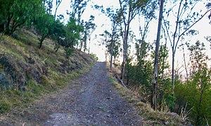 El Tepeyac National Park - Parque Nacional El Tepeyac