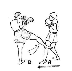 Roundhouse kick - Image: Semi 1