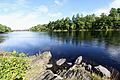 Shad Rips- Inundated by Great Works Dam - panoramio.jpg