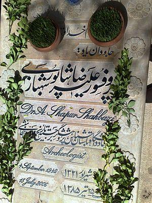 Alireza Shapour Shahbazi