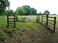Sheep pasture - geograph.org.uk - 1945256.jpg