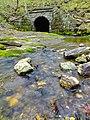 Shenks Ferry Wildflower Preserve (9).jpg
