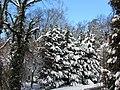 Silver Spring Snow 05.jpg