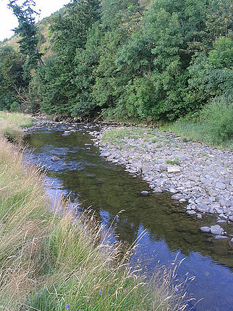 Slitrig Water - The Slitrig Water at Fleety Wood, 4 km from Dodburn, in the Scottish Borders