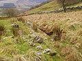 Small stream at foot of Craig Llwyn-gwern - geograph.org.uk - 682753.jpg