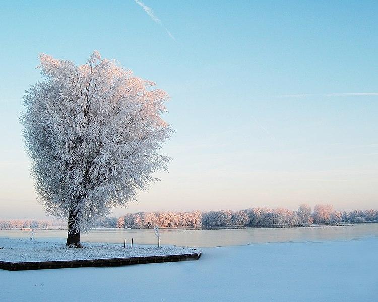 File:Sneeuw1.jpg