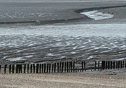 Snettisham Beach at low tide.jpg