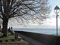 St-Prex-Lausanne-Ouchy (12.12.12) 23 (8270459008).jpg
