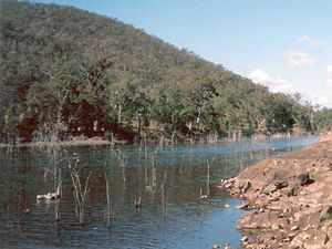 Stanley River (Queensland) - Stanley River downstream from the Somerset Dam