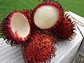 Starr-071106-0005-Nephelium lappaceum-fruit-Makawao-Maui (24777847602).jpg