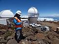 Starr-160505-0131-Dubautia menziesii-Kim and PanSTARRS telescopes-Science City-Maui (27263855701).jpg