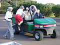 Starr 020112-0006 Hibiscus brackenridgei subsp. brackenridgei.jpg