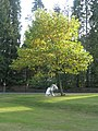 Statue of a unicorn within the grounds of King Edward's School - geograph.org.uk - 1546213.jpg