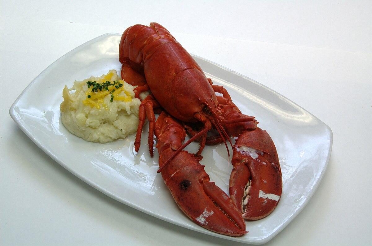 Lobster Claw Restaurant North Reading Ma Menu