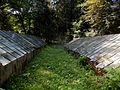 Stepanavan Dendropark 1, ArmAg (35).jpg
