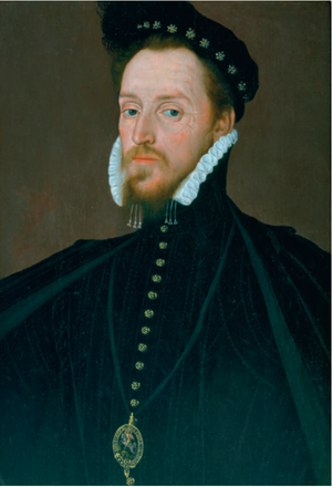 Henry Carey, 1st Baron Hunsdon - Henry Carey, 1st Baron Hunsdon, by Steven van Herwijck, c. 1561-63.  Private collection, on loan to the Globe Theatre.